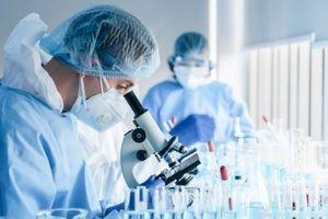 Nova studija: Kovid nije respiratorna, već vaskularna bolest