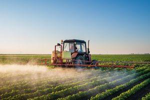 U Švajcarskoj referendum o pesticidima: Može li se bez njih?