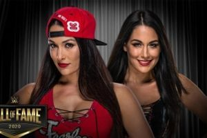Not in Hall of Fame - The Bella Twins to the WWE Hall of Fame
