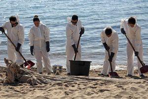 Korsika: Riesiger Ölteppich verschmutzt Strand