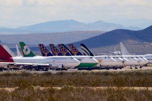 Mojave-Wüste: Airline-Mitarbeiter müssen Klapperschlangen mit Besenstielen vertreiben