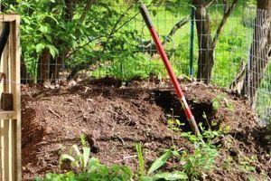 Žena se vyhrabala z hrobu poté, co byla oloupena ve svém domě, mučena a pohřbena zaživa na své zahradě