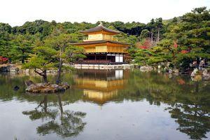 Japanski horoskop: Šta vaša krvna grupa otkriva o vama i sa kim se najbolje slažete?