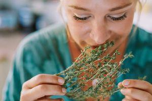 Fűszernövények, amelyek nemcsak ízesítenek, hanem gyógyítanak is