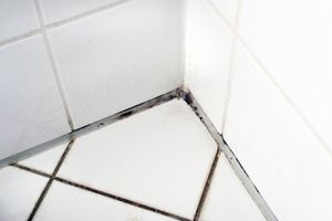Zöldesfekete foltok a zuhany szilikonján? Így tüntetheted el a makacs penészt