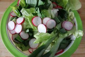Ne bacajte koren zelene salate, odličan je za nervozu