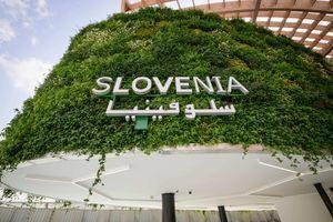 Slovenija bo kot prva država na svetu izdala NFT žeton