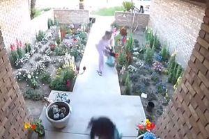 Vlasnika ni na vidiku: Majka u poslednji čas spasila dve ćerkice od napada razjarenih pitbulova (VIDEO)
