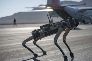 MAŠINA SMRTI: Ovaj robot-pas je naoružan teškim snajperom i spreman za bojište (FOTO)
