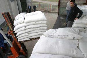 UKIDANJE KVOTA EU LOŠE UTICALO NA INDUSTRIJU Evo koje su preporuke za proizvodnju ŠEĆERNE REPE i šećera