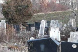 Car iz Srbije izneo na groblje bukvalno sve što je imao u kući od hrane i internet ne može da dođe do vazduha od smeha