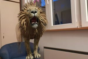 Lav, panda, tigar, sve u 3D u vašem domu zahvaljujući Google