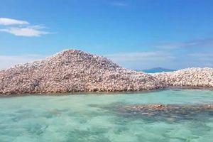 Najneobičnija turistička atrakcija na svetu: Ljudi plaćaju hiljade evra da vide GROBLJE ŠKOLJKI