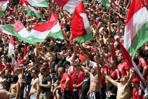 (UŽIVO) MAĐARSKA - FRANCUSKA Živeo fudbal! Blago njima, za ovako nešto se živi!