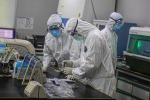 (VIDEO) U Italiji je nastao haos zbog EMISIJE IZ 2015. o virusu iz kineske laboratorije: Zemlja se digla na noge, ali se istina PREĆUTKUJE