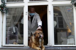 """ŠTA JE TO """"MAČIJA KORONA""""? Stručnjaci otkrivaju da li psi i mačke mogu da se zaraze novim virusom"""