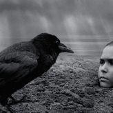 The Painted Bird: Ένα αριστούργημα μόνο για γερά στομάχια