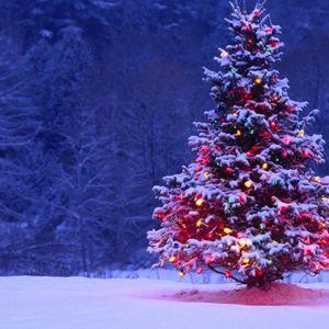 Μερομήνια: Δείτε τι καιρό θα κάνει μέχρι τα Χριστούγεννα -Πότε θα χιονίσει