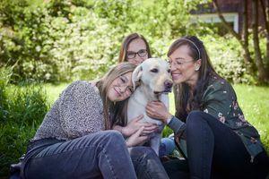 Úgy tűnik, a kutyád jobban szereti az idegeneket, mint téged? A kutatók szerint nem kell aggódnod!