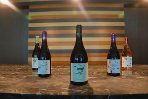 Svetska ikona vino Terrasse à l'Ombre predstavljeno u regionu