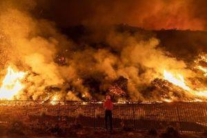 PAKAO ZBOG GLUPOSTI! Tinejdžerke zapalile 200 tona sena - snimale video za Tiktok!