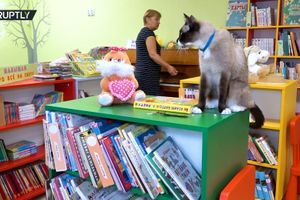 Nesvakidašnji radnik biblioteke: Ne priča, ali se odlično snalazi sa knjigama