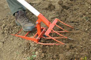 V začetku jeseni je treba pripraviti vrtna tla na zimo!