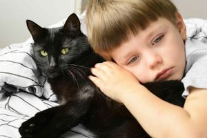 Kdo týrá zvíře, přijde i o dítě. Španělsko chce lépe chránit bezbranné